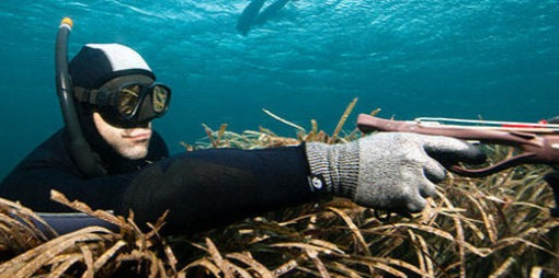 Diving Mask2.jpg