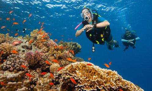 Diving Mask3.jpg