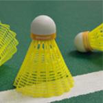 Shuttlecocks For Badminton_2.jpg