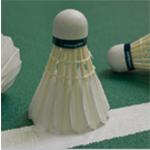 Shuttlecocks For Badminton_3.jpg