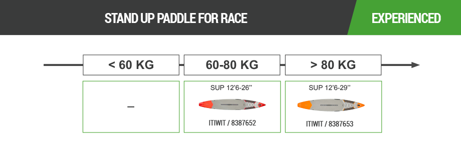 Stand Up Paddle Board6.png