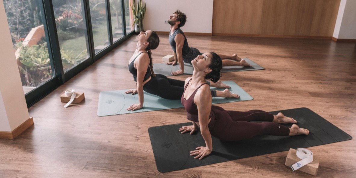 Yoga Day 2 - Toning And Calmness