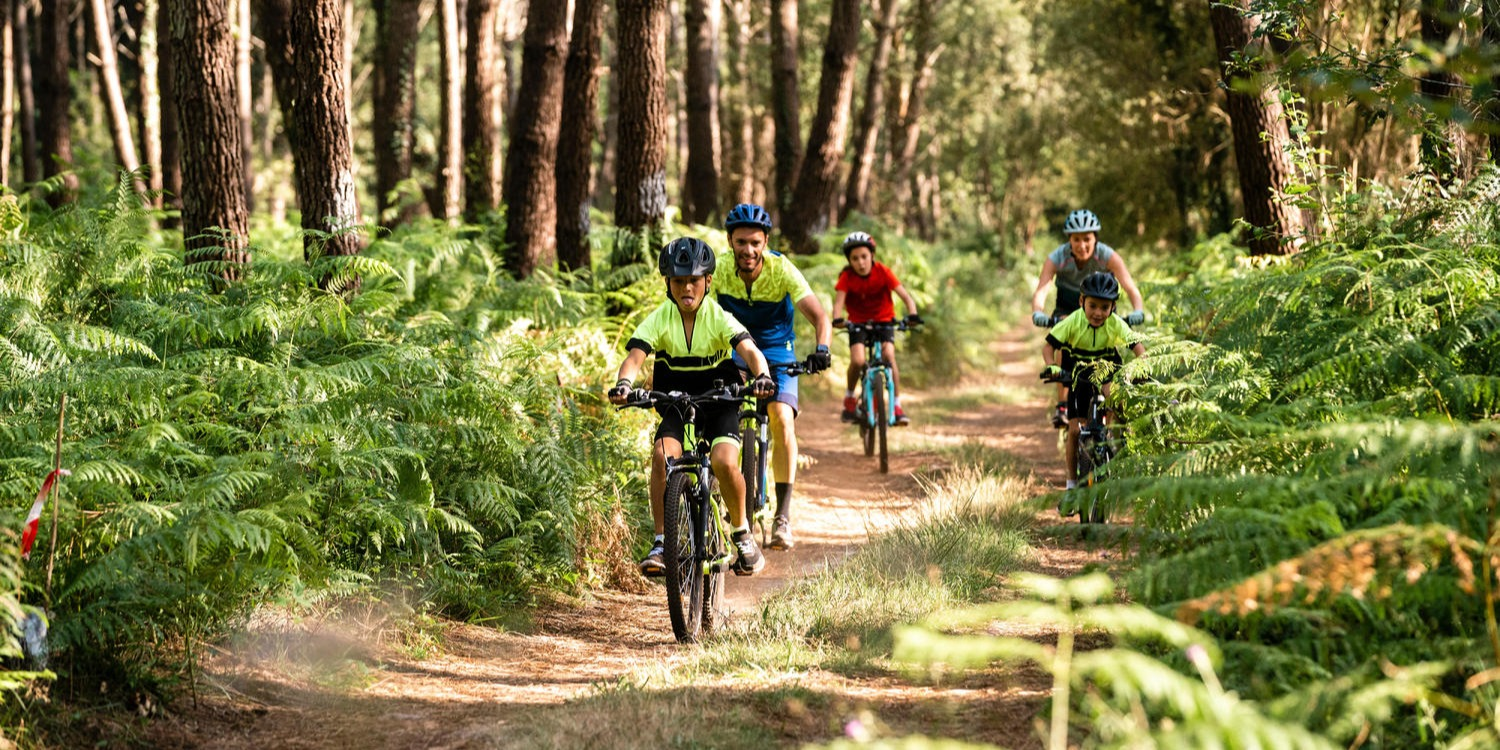 Our Guide To Cycling In The New Forest