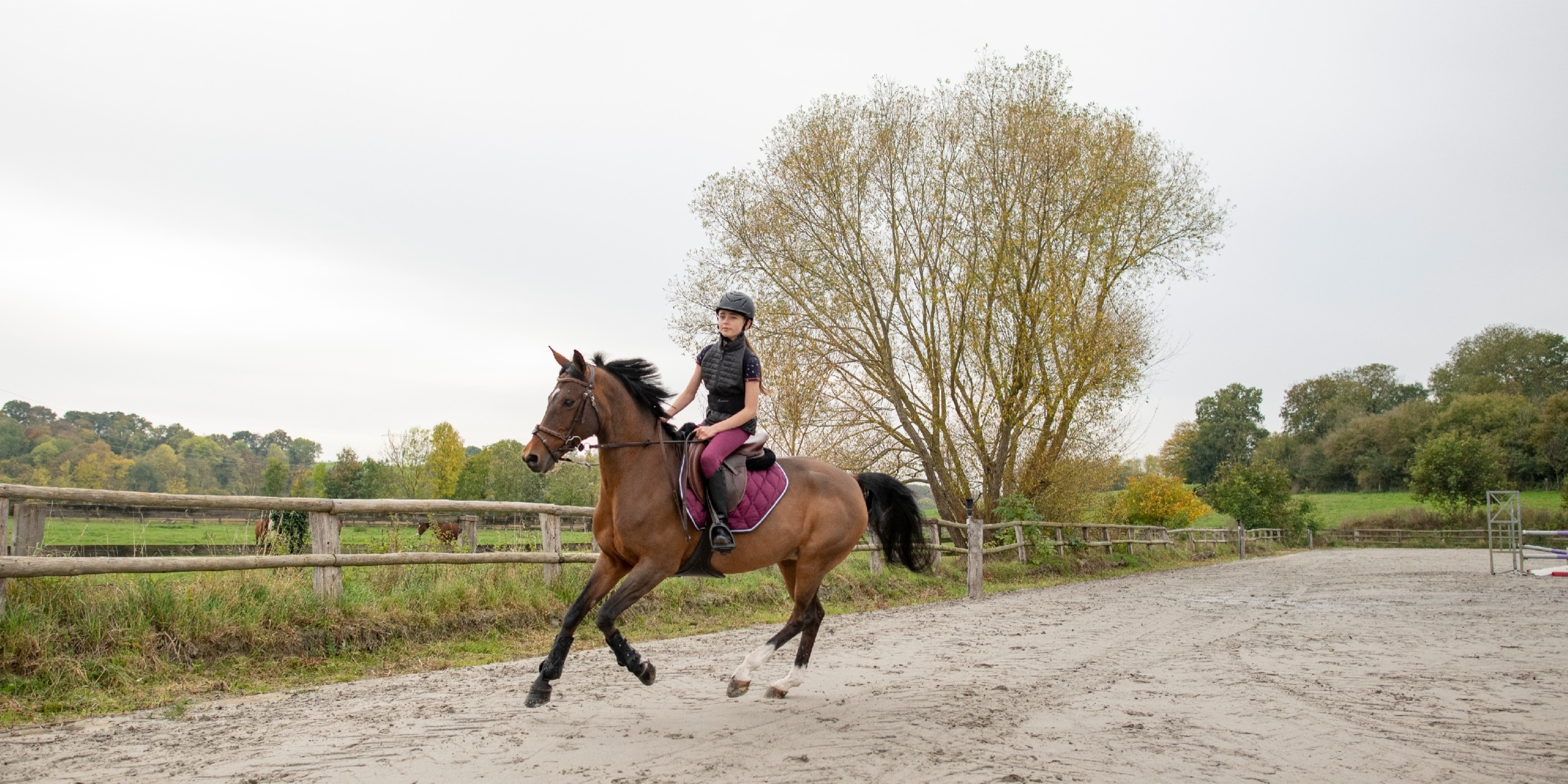 Where's Best To Practice Horse Riding For Beginners?