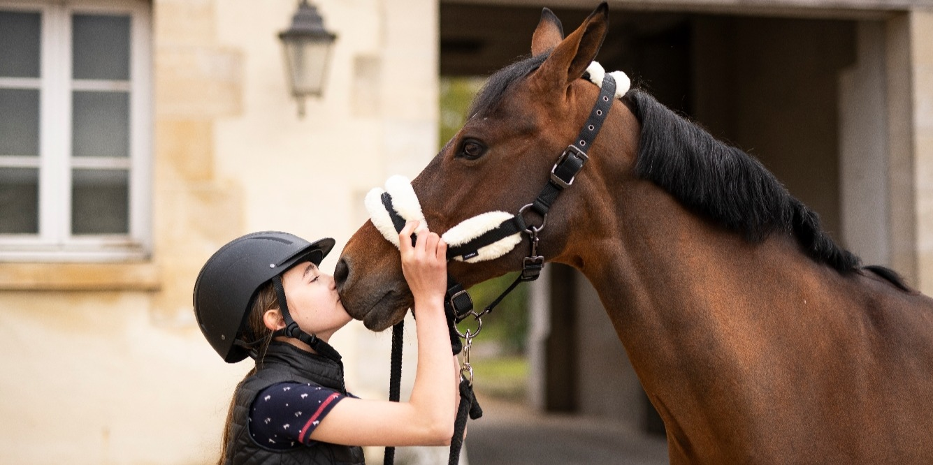 Horse Riding For Beginners - How To Stay Safe At The Stables