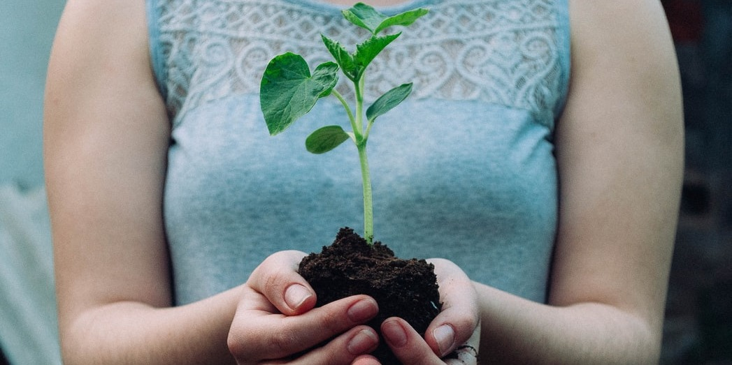 Taking Strides Towards Sustainability: The Importance Of Using Eco Materials In Retail