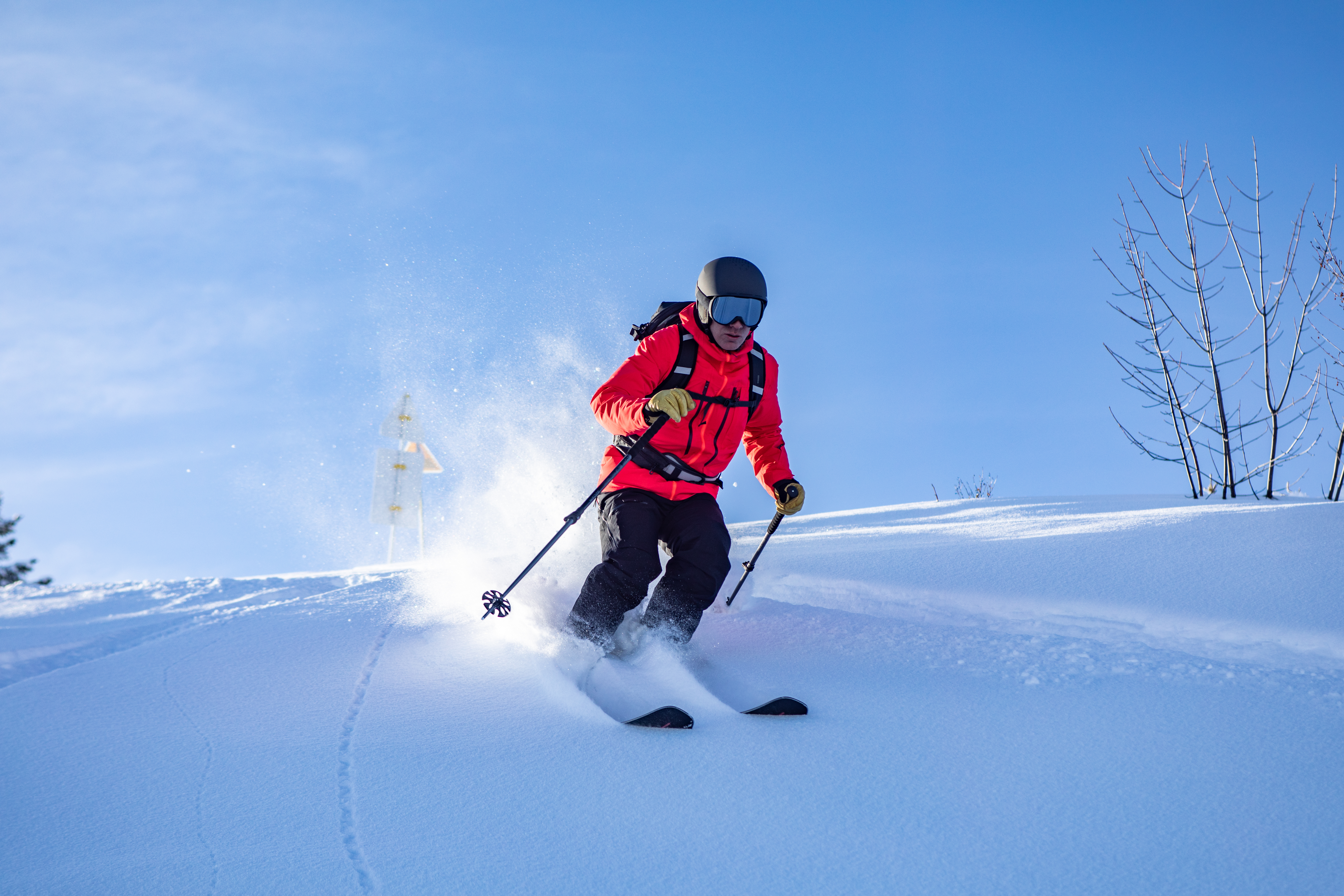 Wedze Ski Freeride Homme Confirme - 001 --- Expires On 29-06-2024.jpg