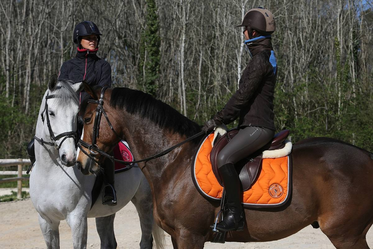 How To Choose Your Saddle Pad?