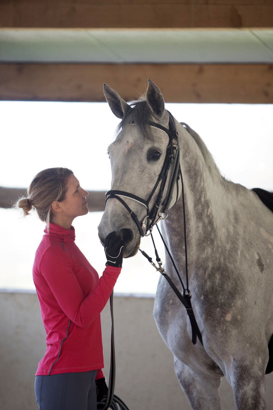 How To Read Your Horse's Mind – A Guide To Body Language