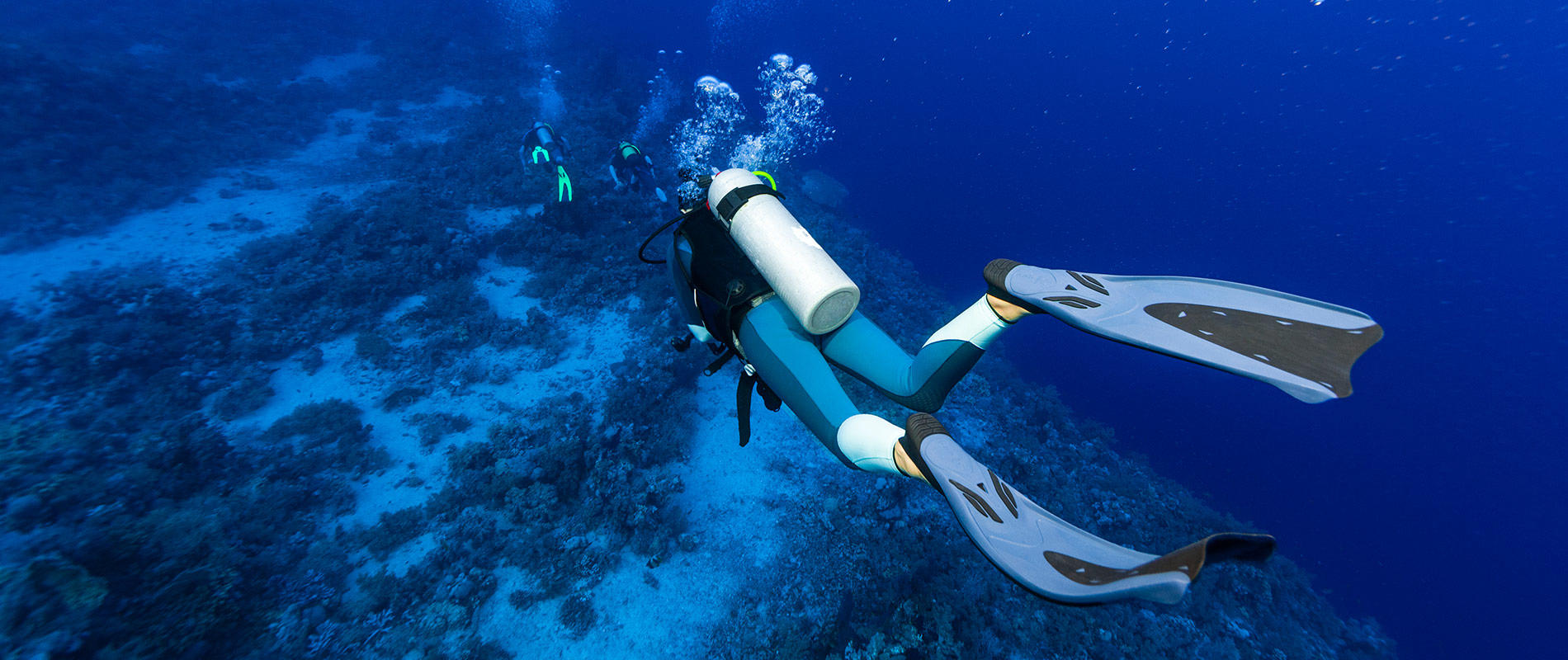 How To Choose Your Snorkeling And Diving Fins?